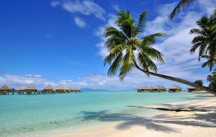 beach-beach-beachfront-coast