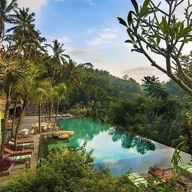 Jungle Fish Bar, Bali Photo by @theworldinterior